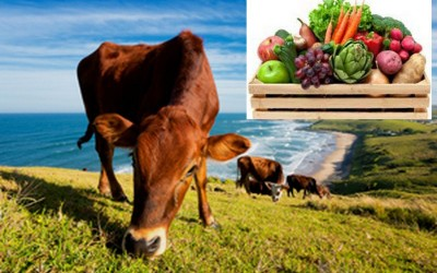 Grass-fed Beef + Fruit & Veg