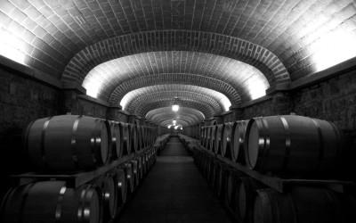 Wine Highlights